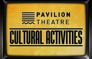 Cultural Activities from the comfort of your own home