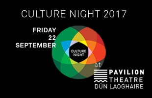 Pavilion Loves Culture Night!