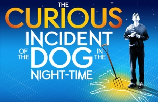 The Curious Incident of the Dog in the Night-Time (Encore Screening)